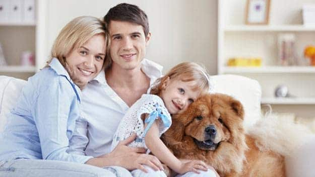 Wills & Trusts dog-young-family Direct Wills Greenford
